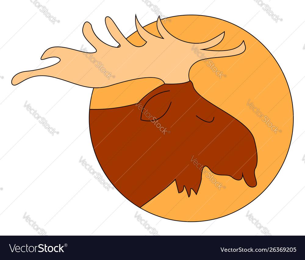 Sleeping moose on white background
