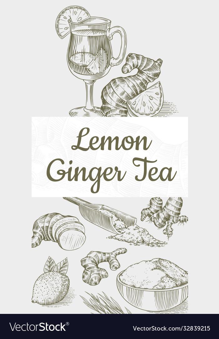 Ginger tea poster chopped rhizome or root fresh