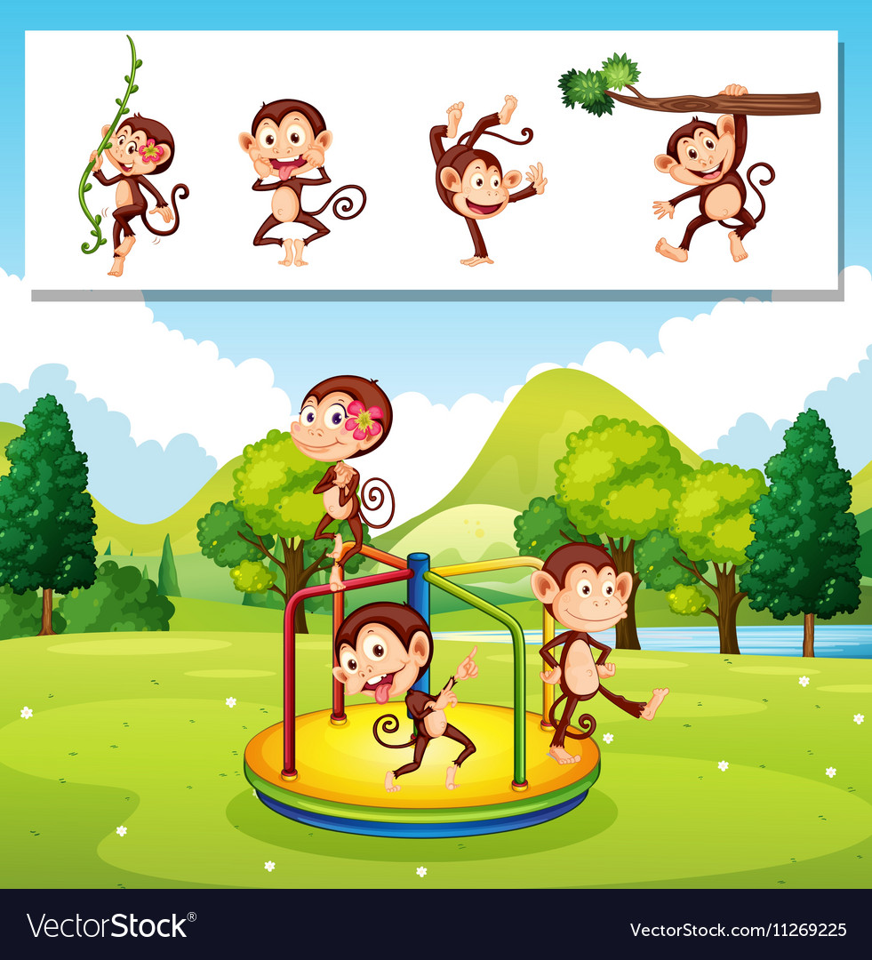 Monkeys playing in the park vector image