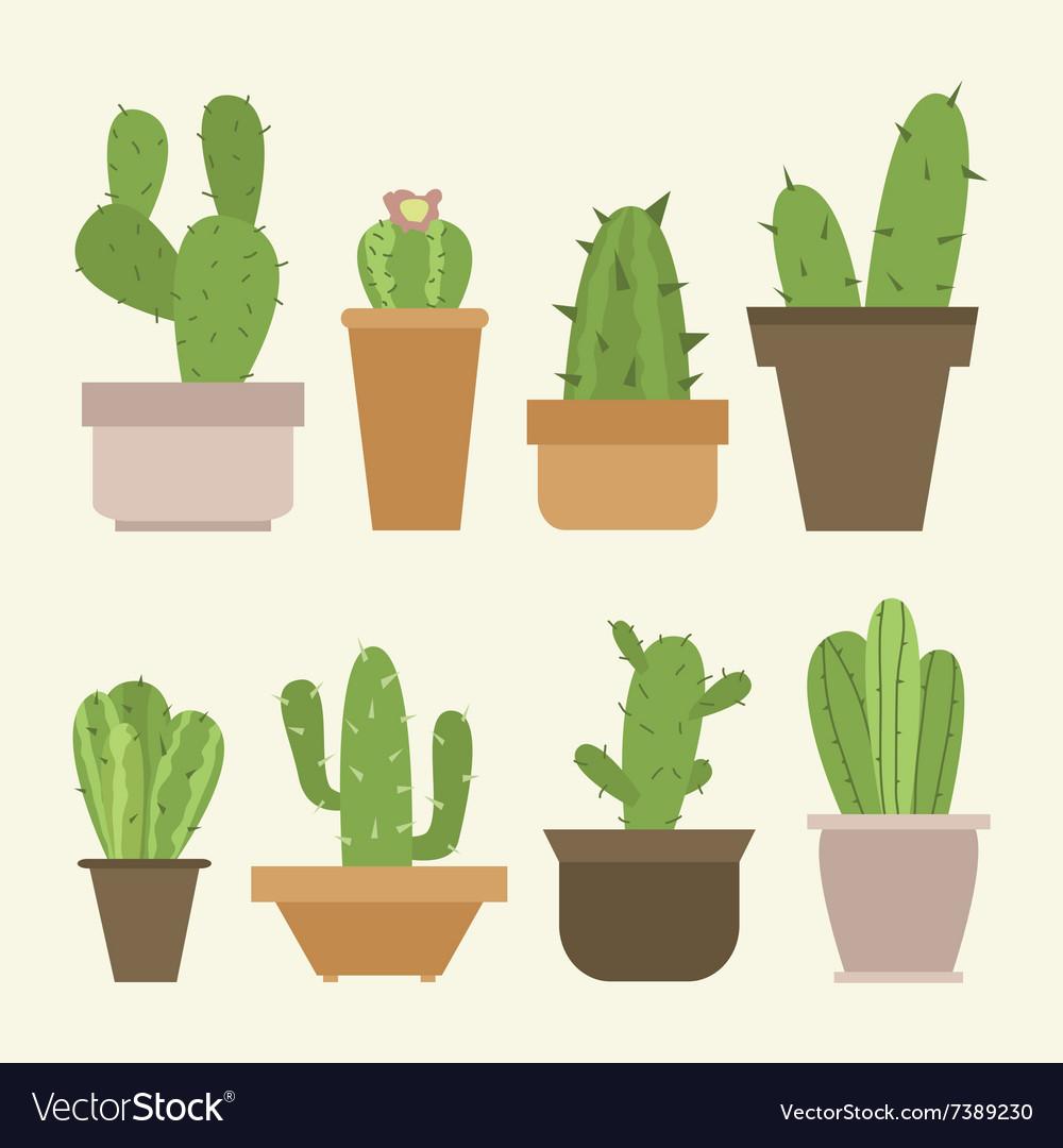 Mini Cactus Set