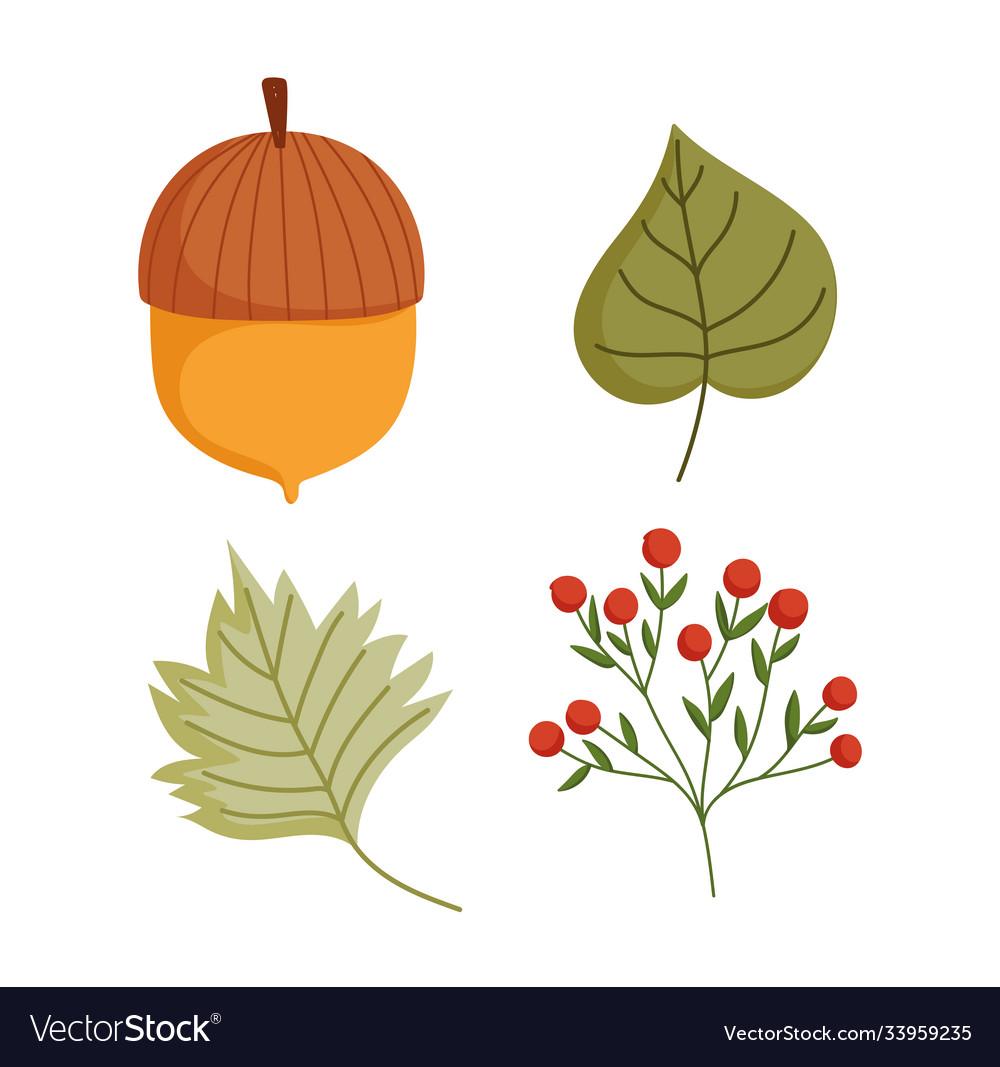 Happy thanksgiving day autumn acorn leaf foliage