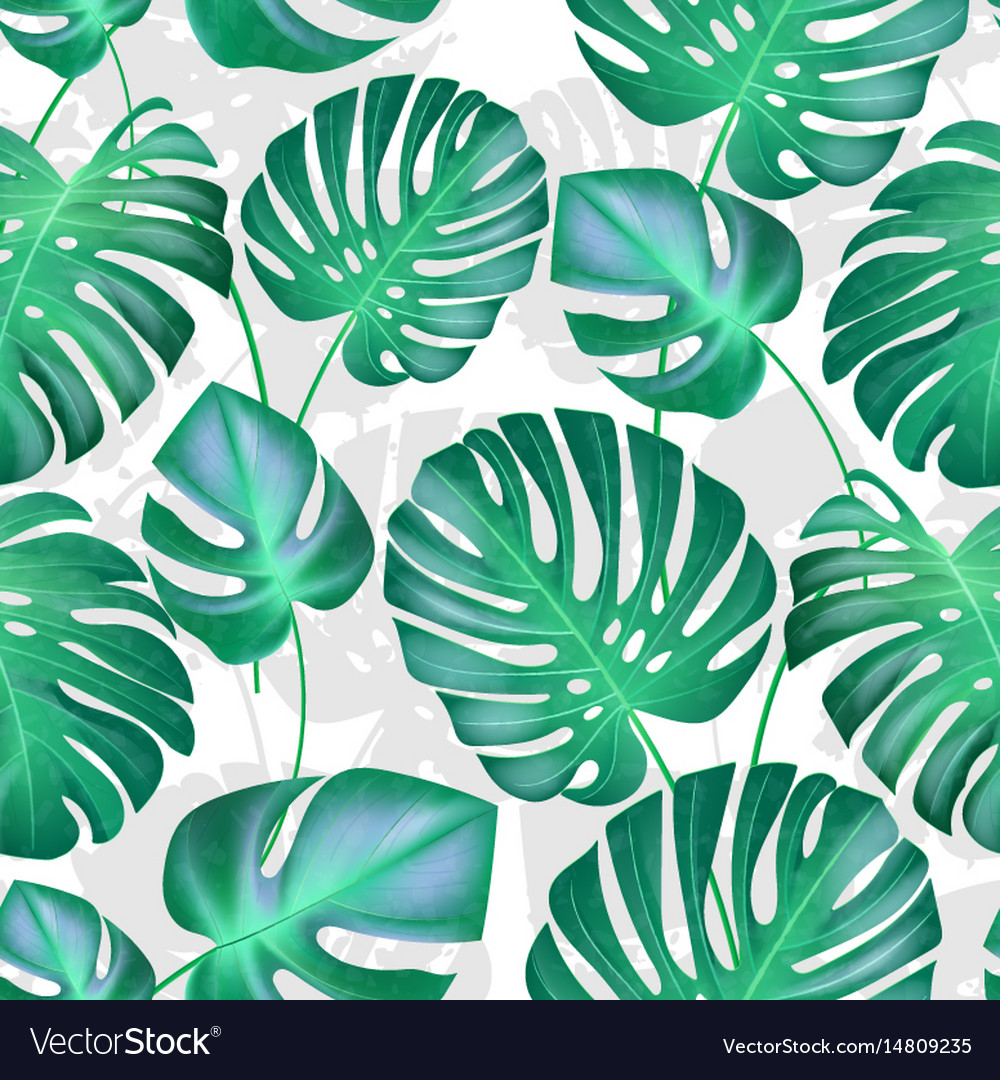 seamless tropical leaves pattern strong royalty free vector