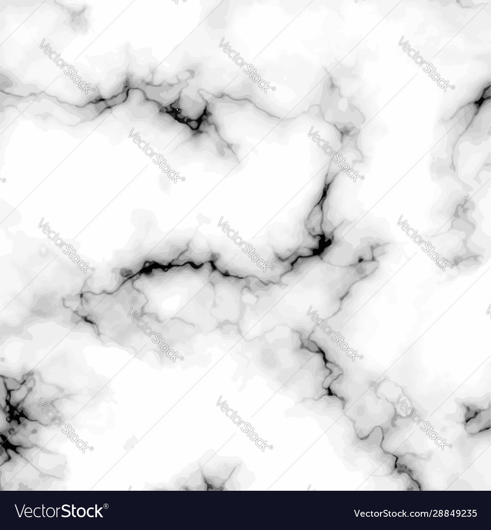 White grey black marble stone background Vector Image
