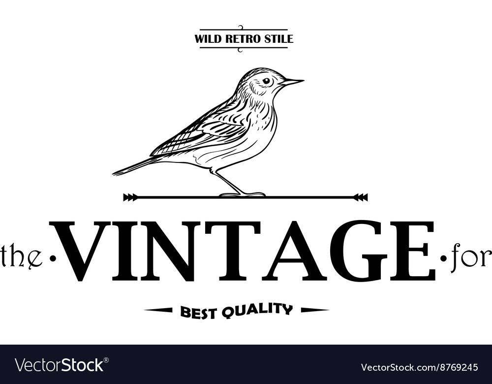 Vintage Labels or Badges Birds vector image