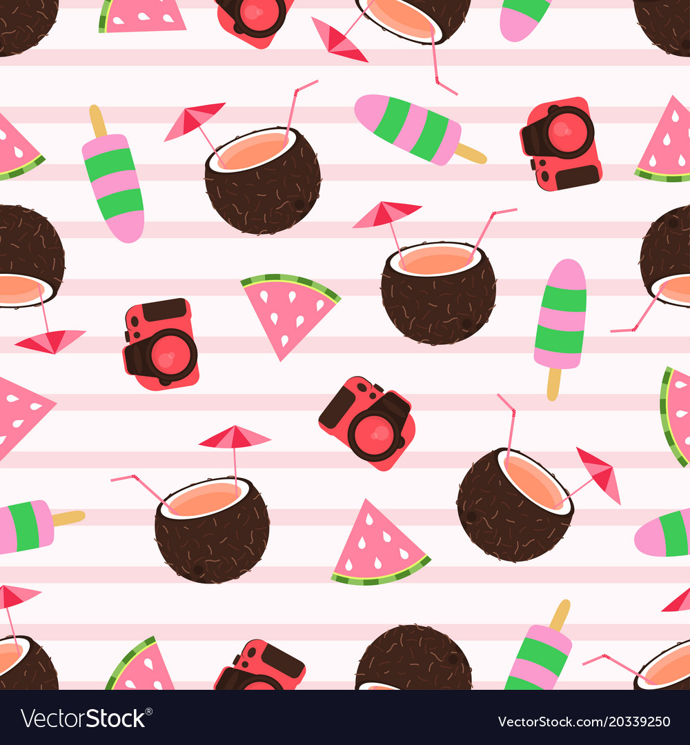 Summer pattern with camera vector image