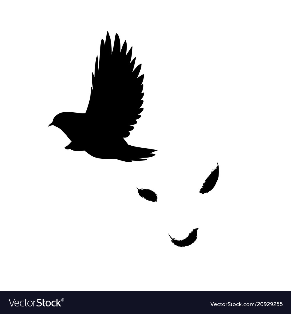 Black flying bird silhouette concept