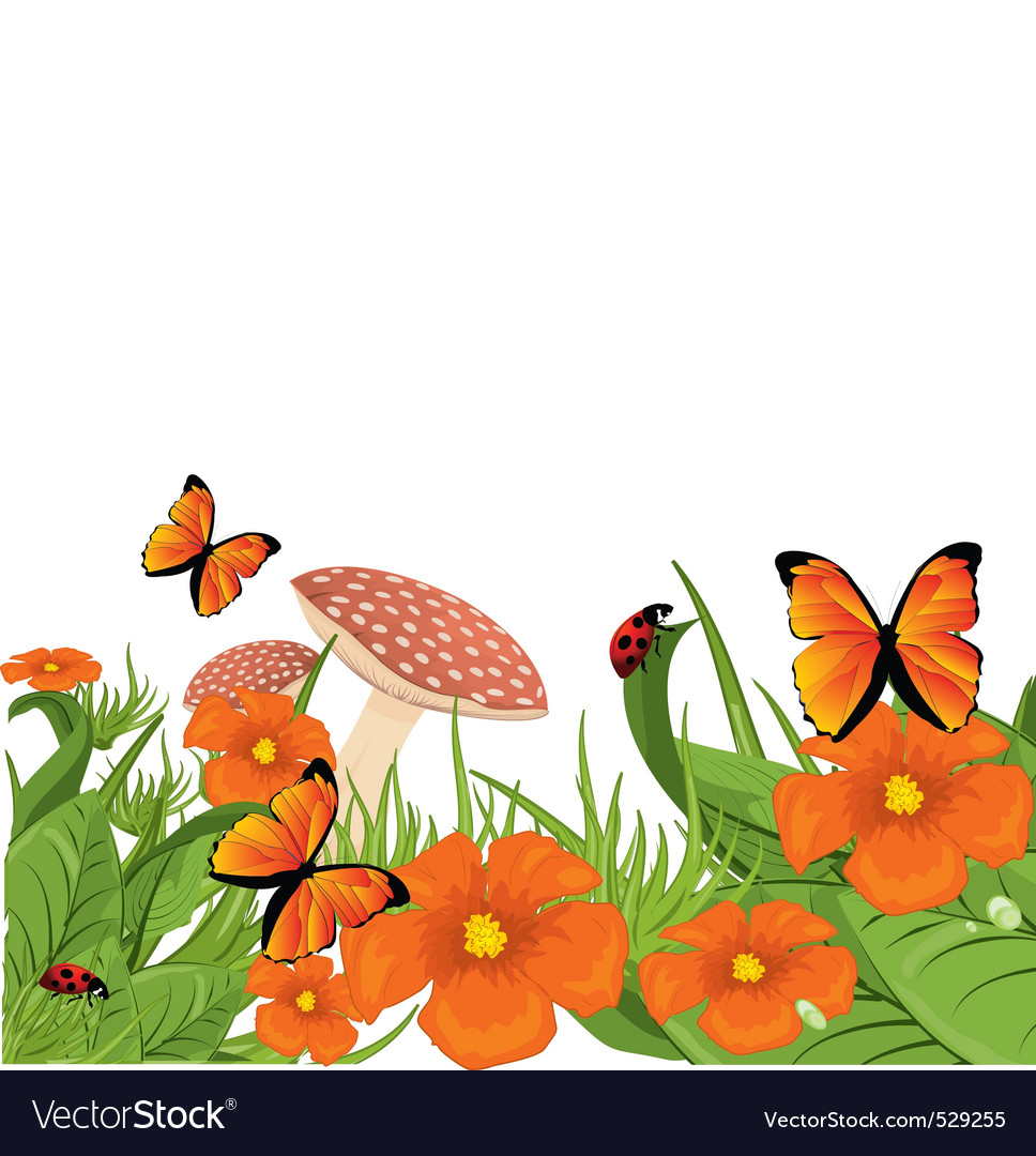 Forest border vector image
