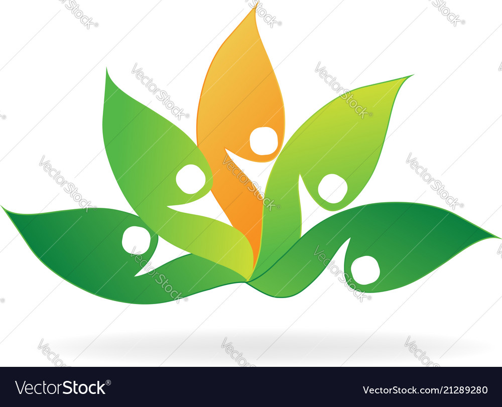 Lotus Flower Abstract Royalty Free Vector Image