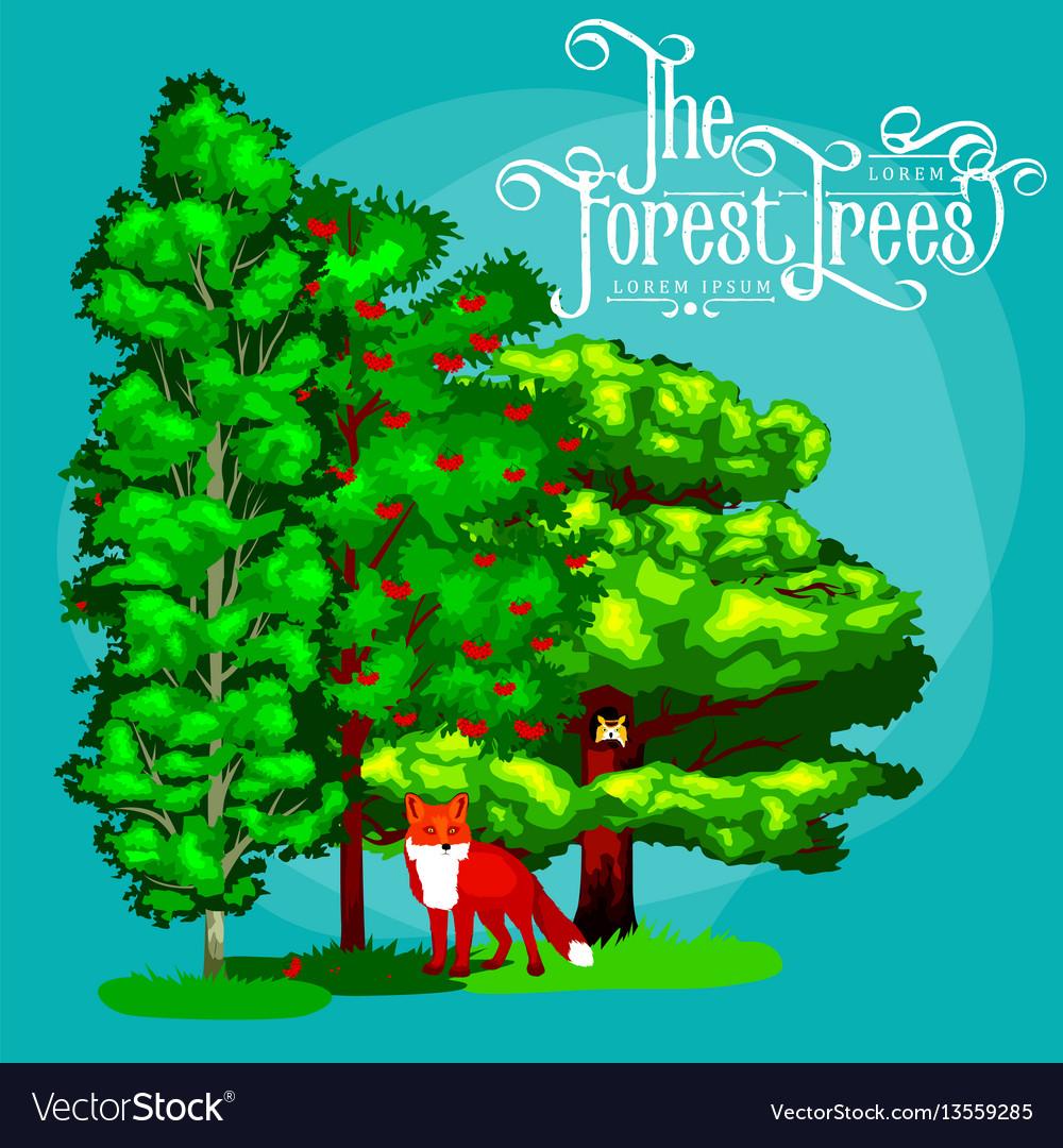 Cartoon set trees outdoor park outdoor
