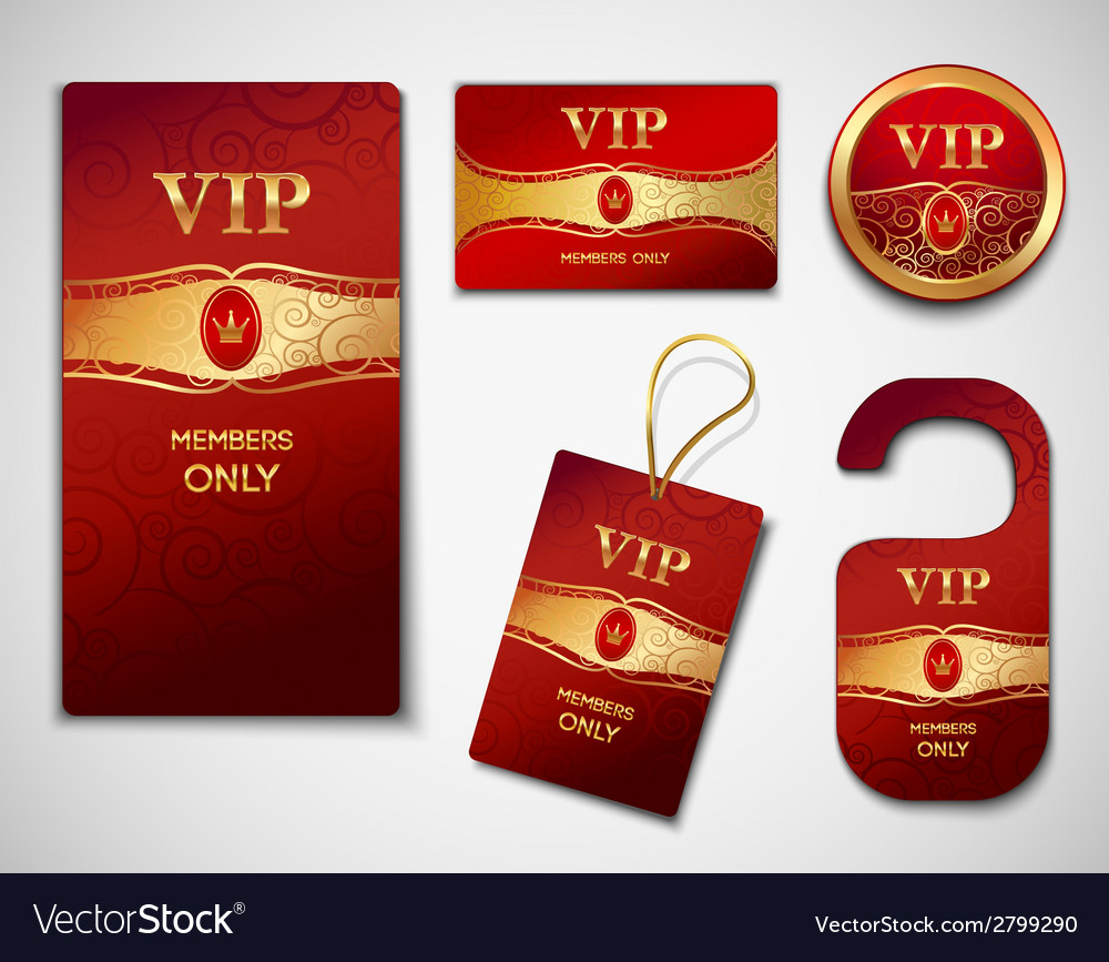 Vip cards design template vector image