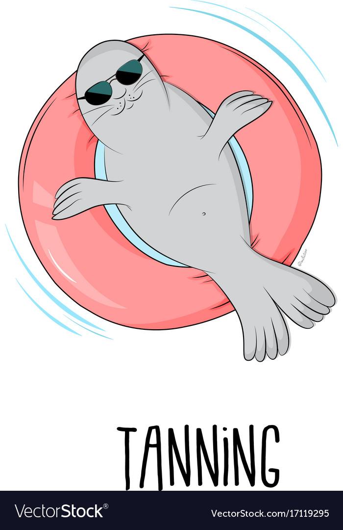 Tanning seal cartoon cute