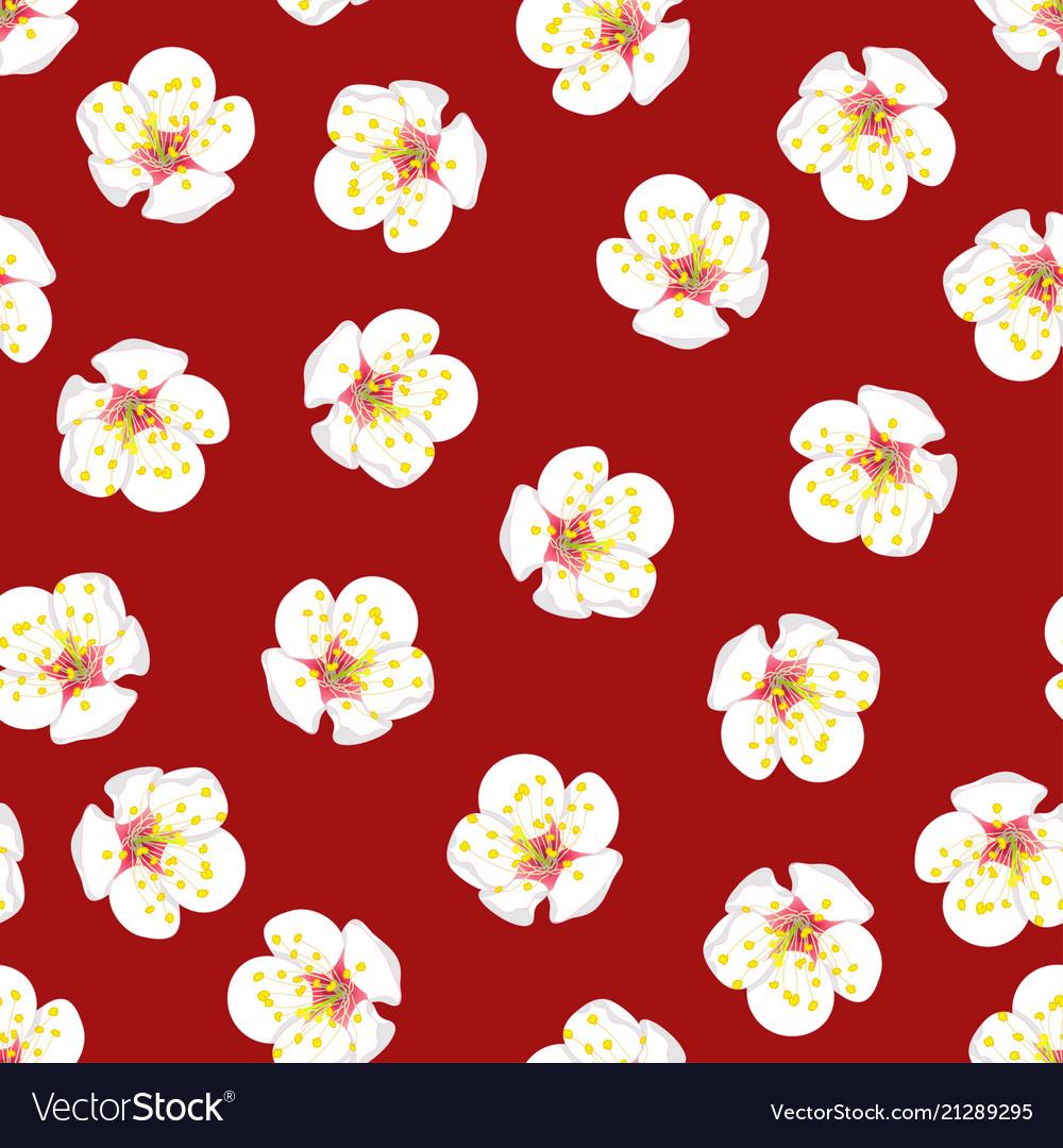 White plum blossom flower seamless on red
