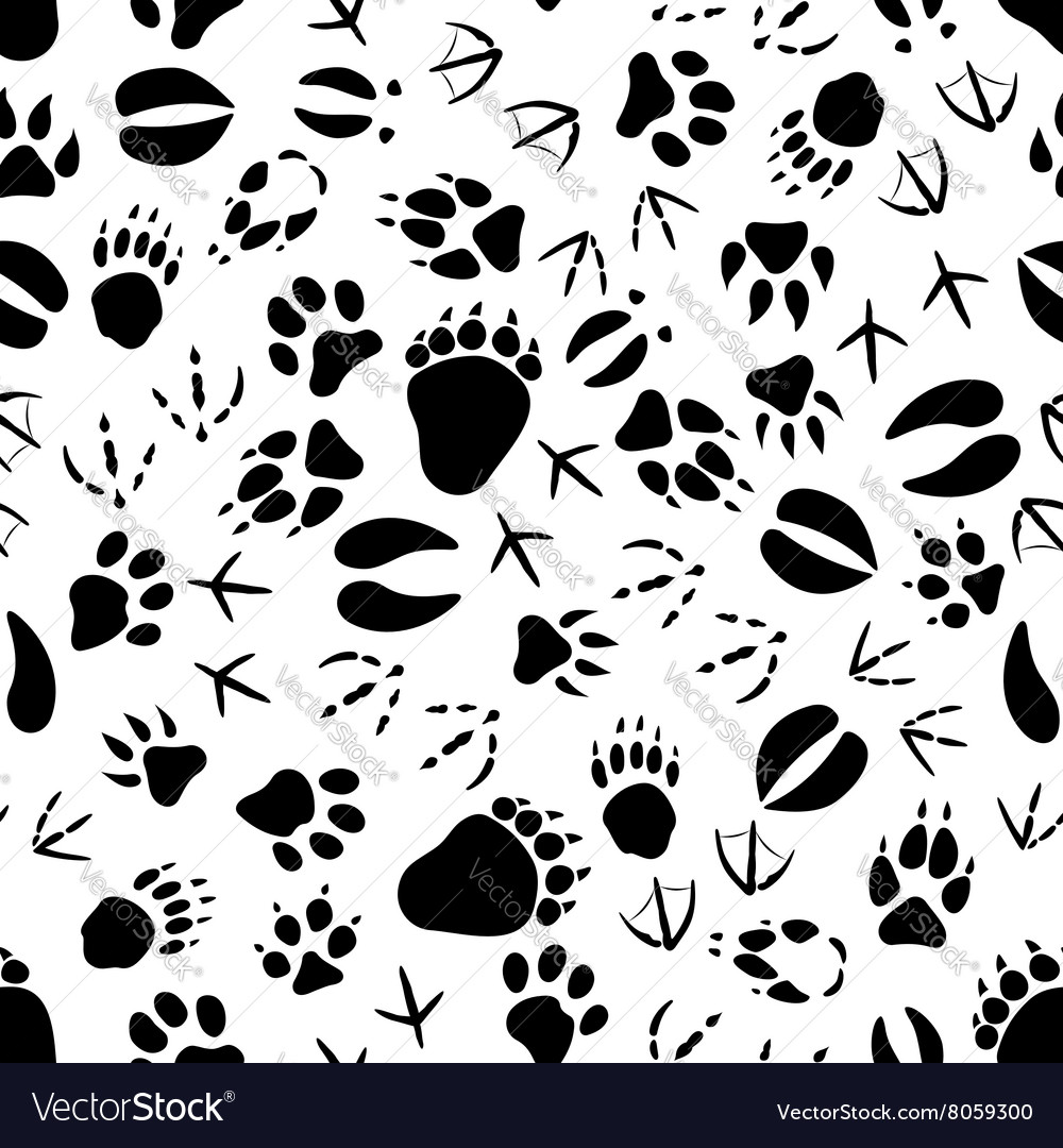 Black and white animal tracks pattern