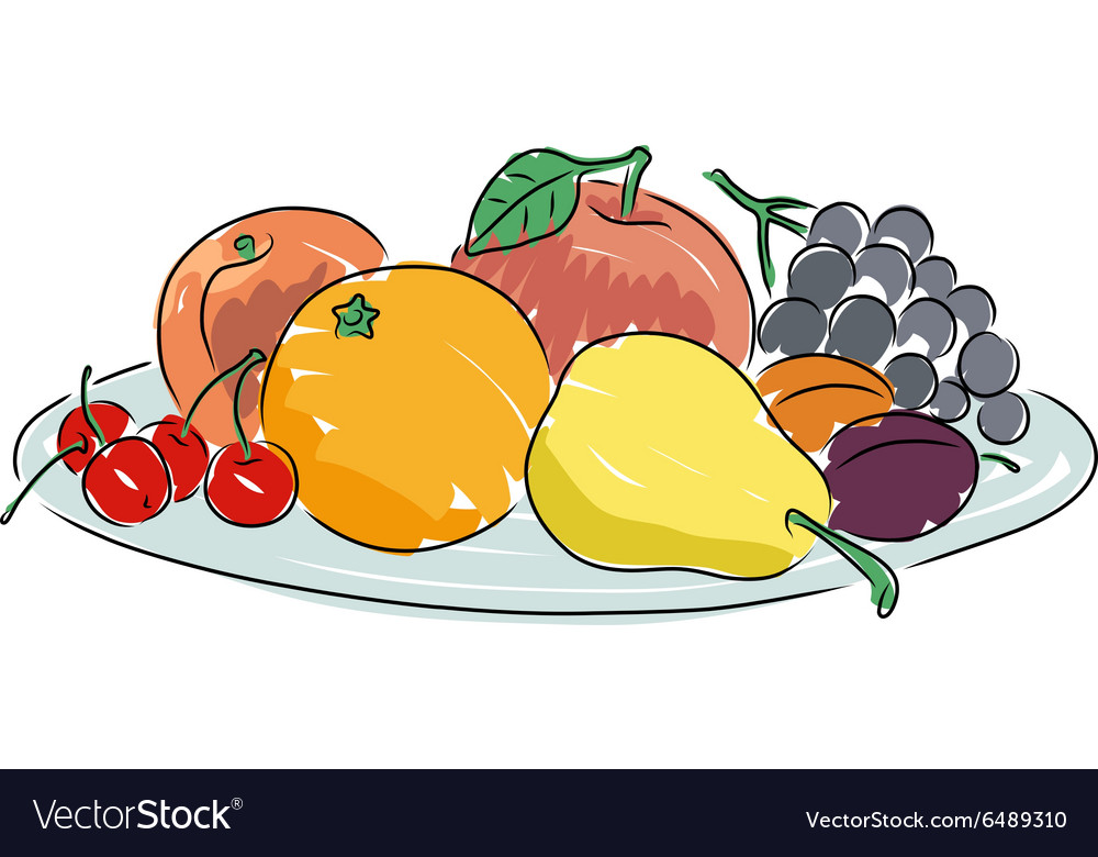 A plate of fruit vector image