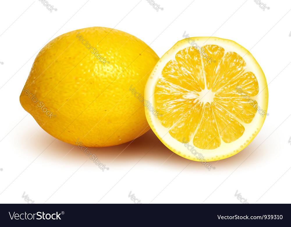 Fresh lemon and lemon slice