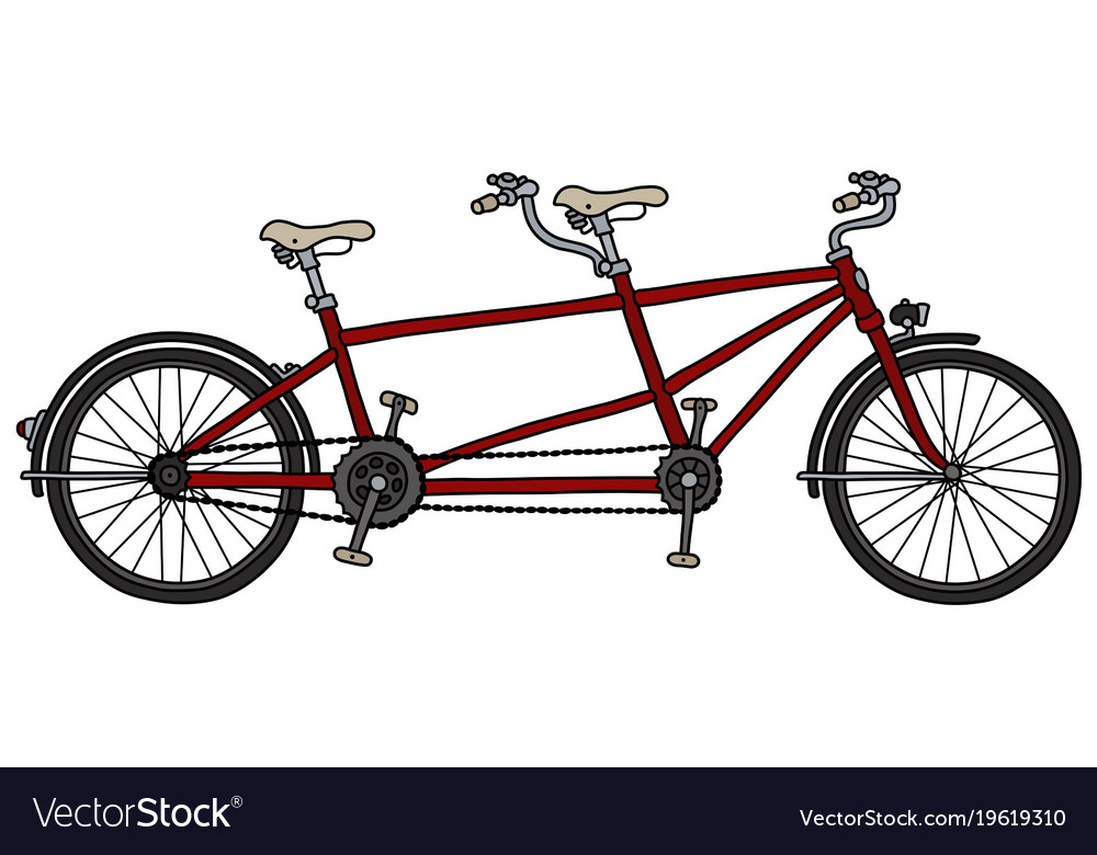 The red tandem bicycle vector image