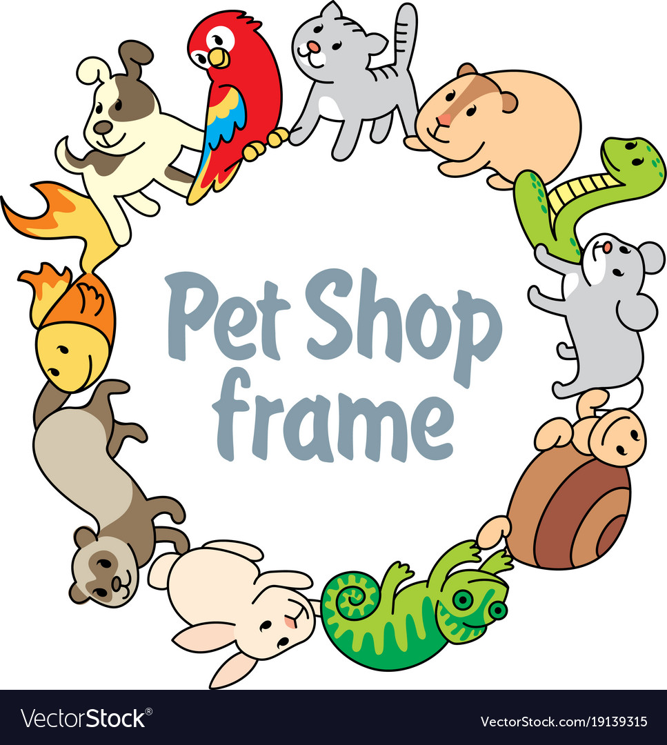Frame Pet Shop Types Of Pets Royalty Free Vector Image