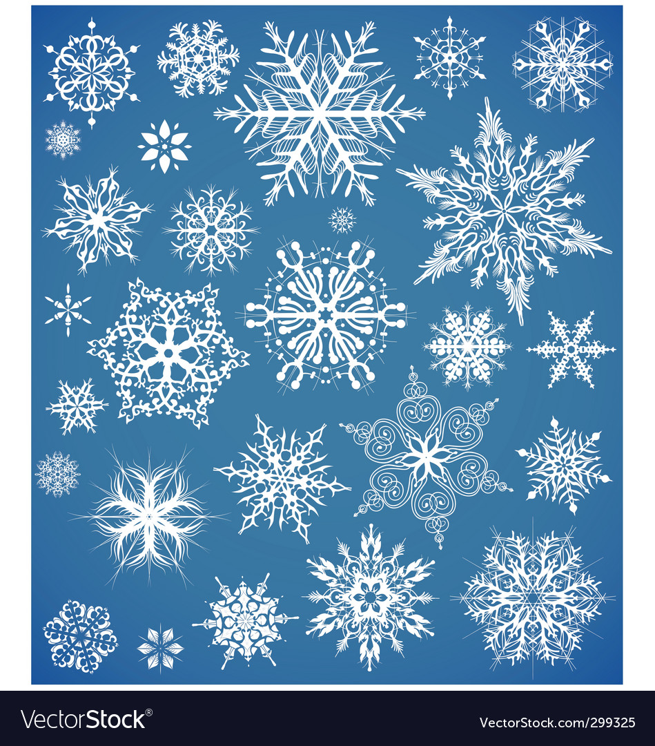 snowflakes design collection vector image