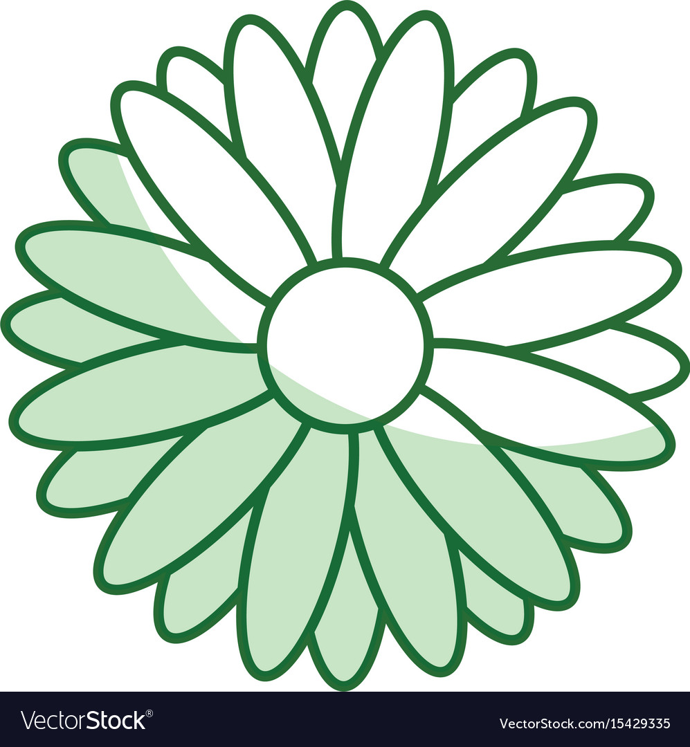 cute sunflower isolated icon royalty free vector image