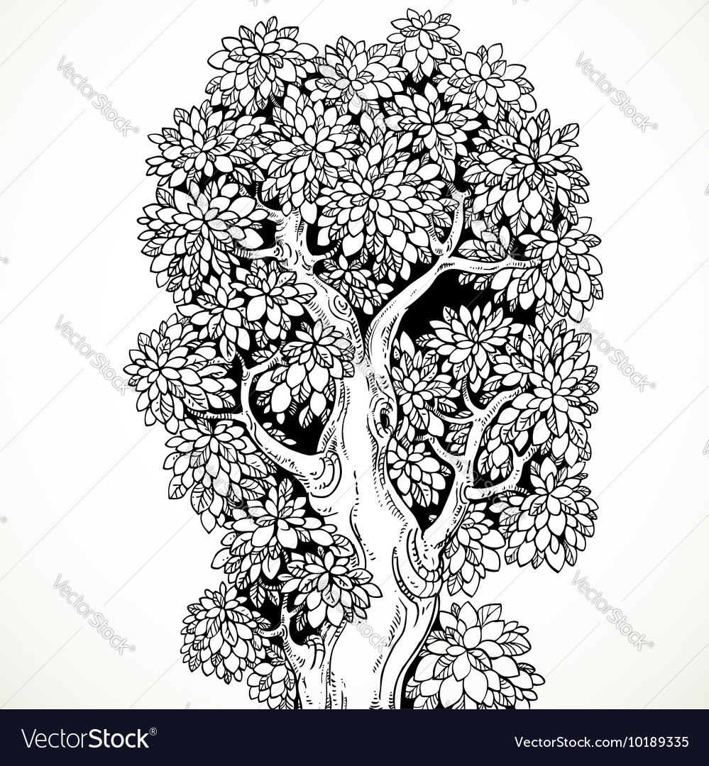 Graphically drawing black ink big old tree