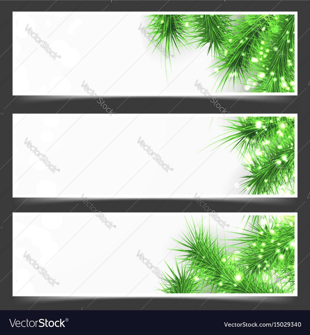 Bright shimmering green fir tree branches flyer