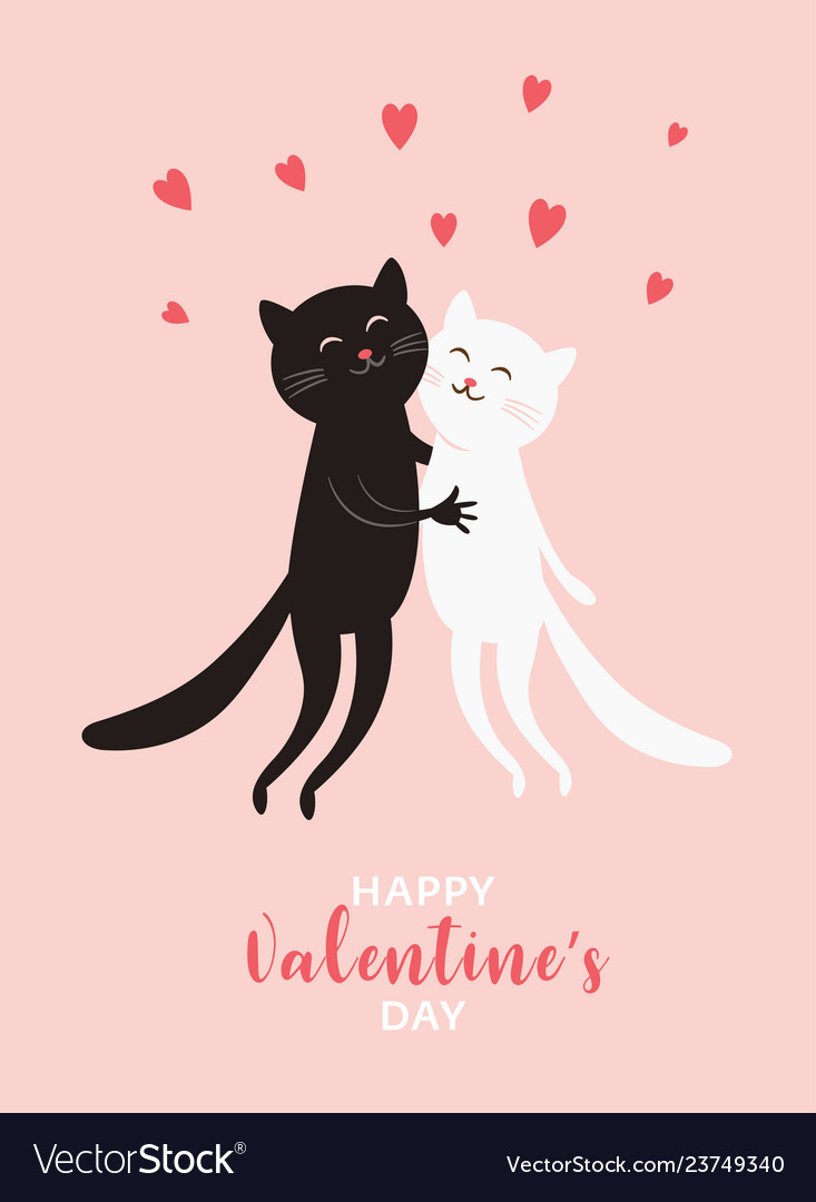 Cute cats valentines day greeting card