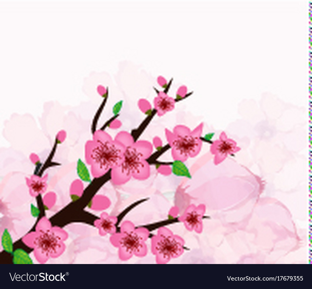 Chinese new year card with plum blossom vector image