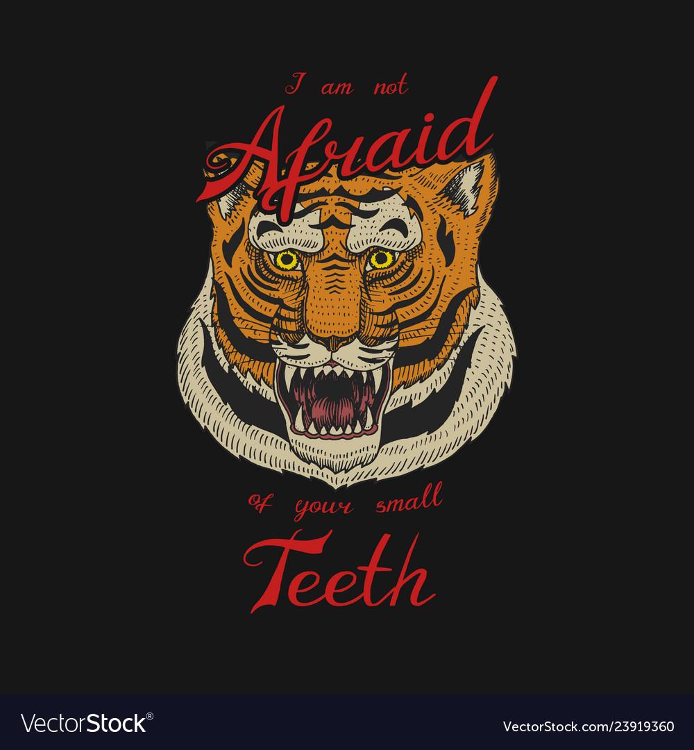 Asian tiger logo face or head of wild animal