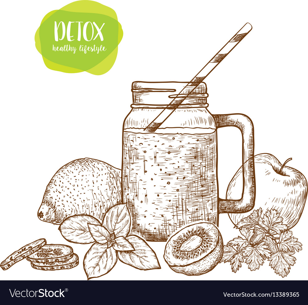 Smoothie detox water and drinks sketches of