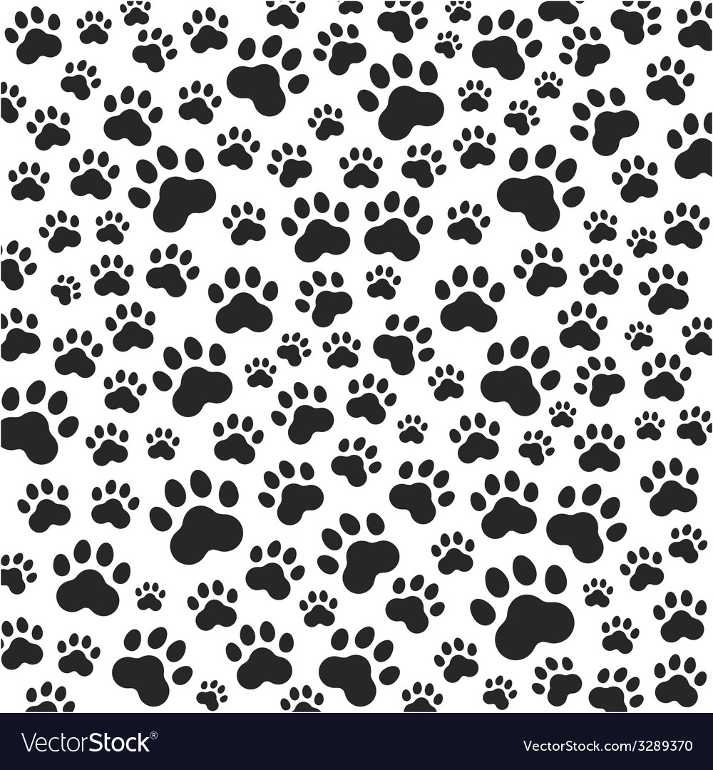 Cat or dog paws background