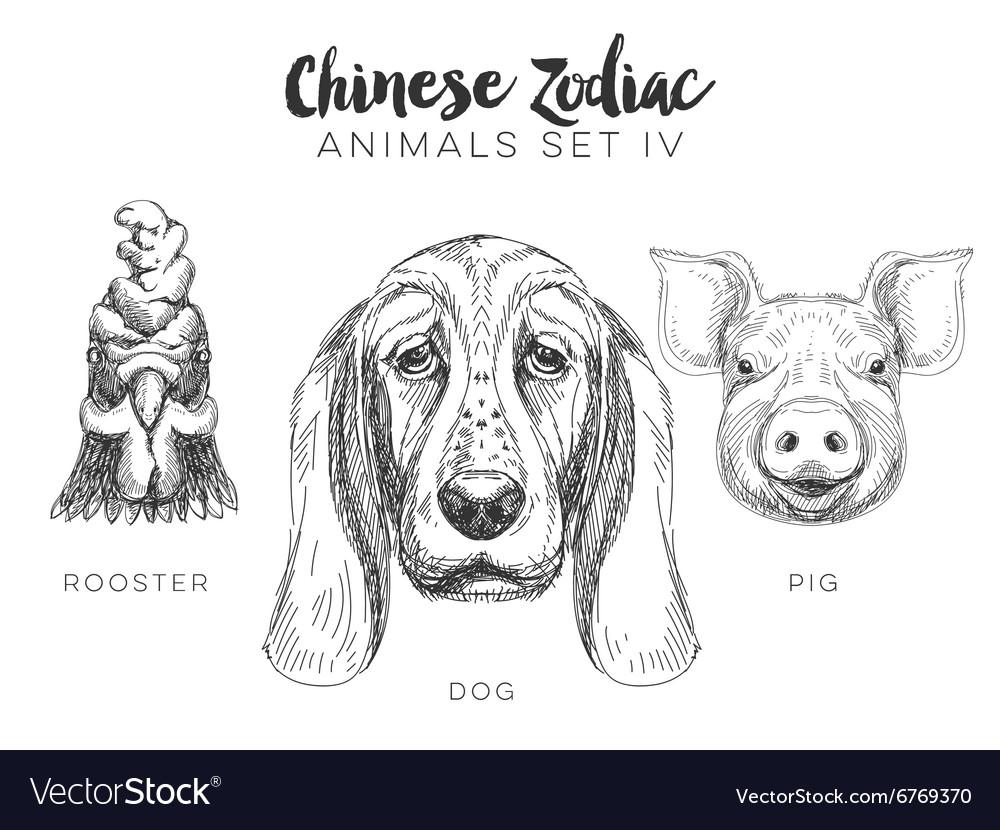 Set of hand drawn chinese zodiac animal