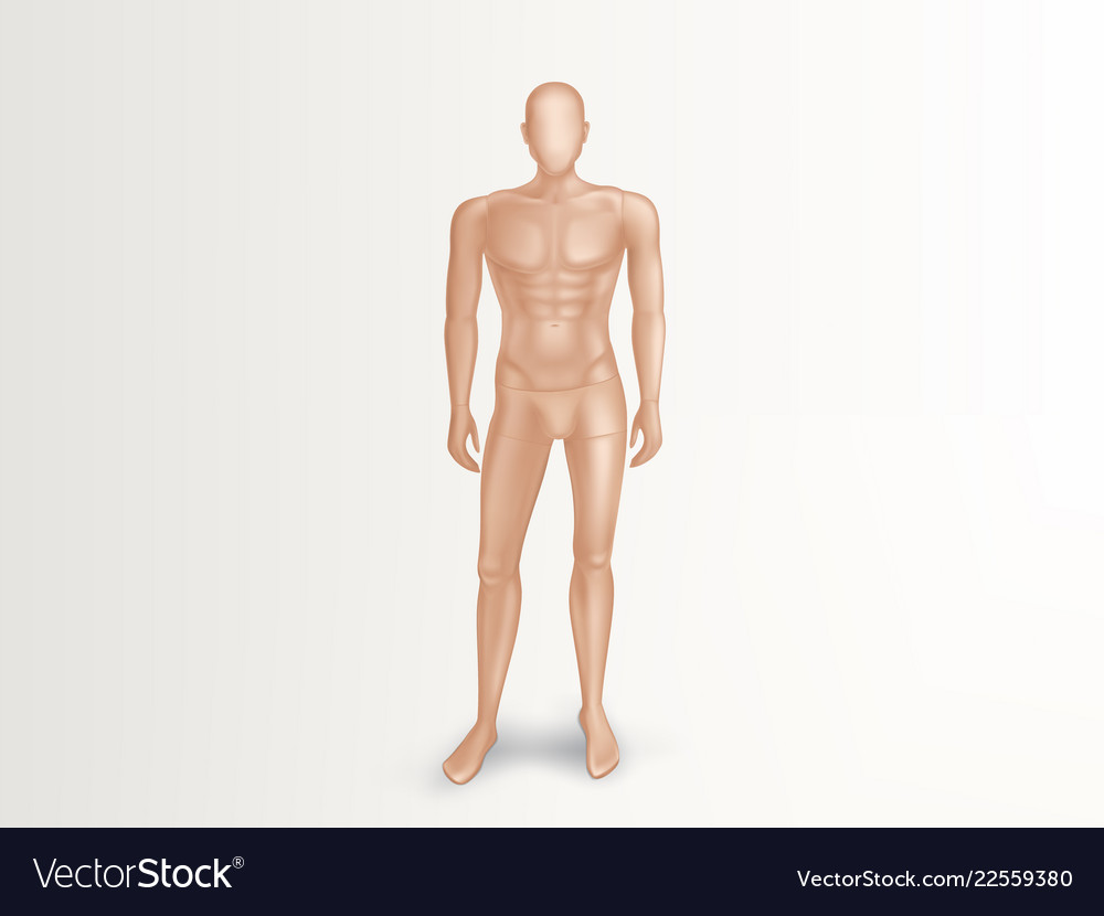 3d male mannequin nude plastic dummy