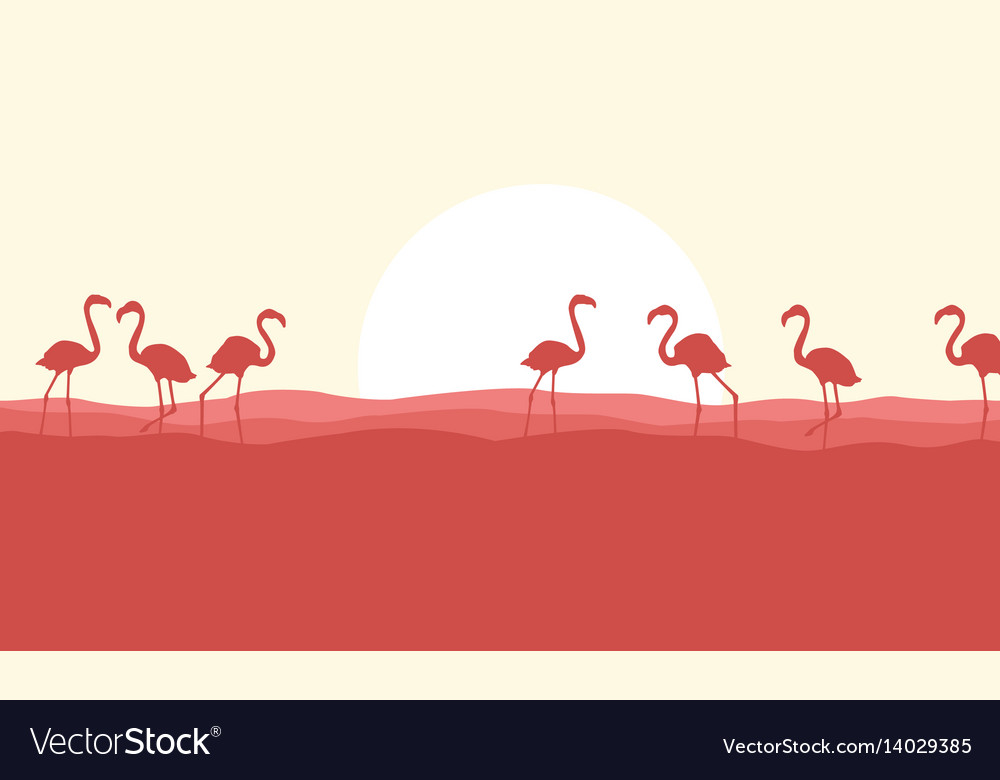Many flamingo scene silhouette style vector image