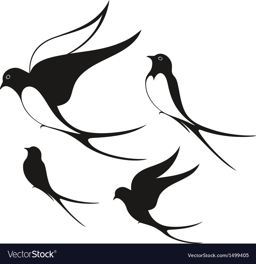 swallow royalty free vector image vectorstock vectorstock