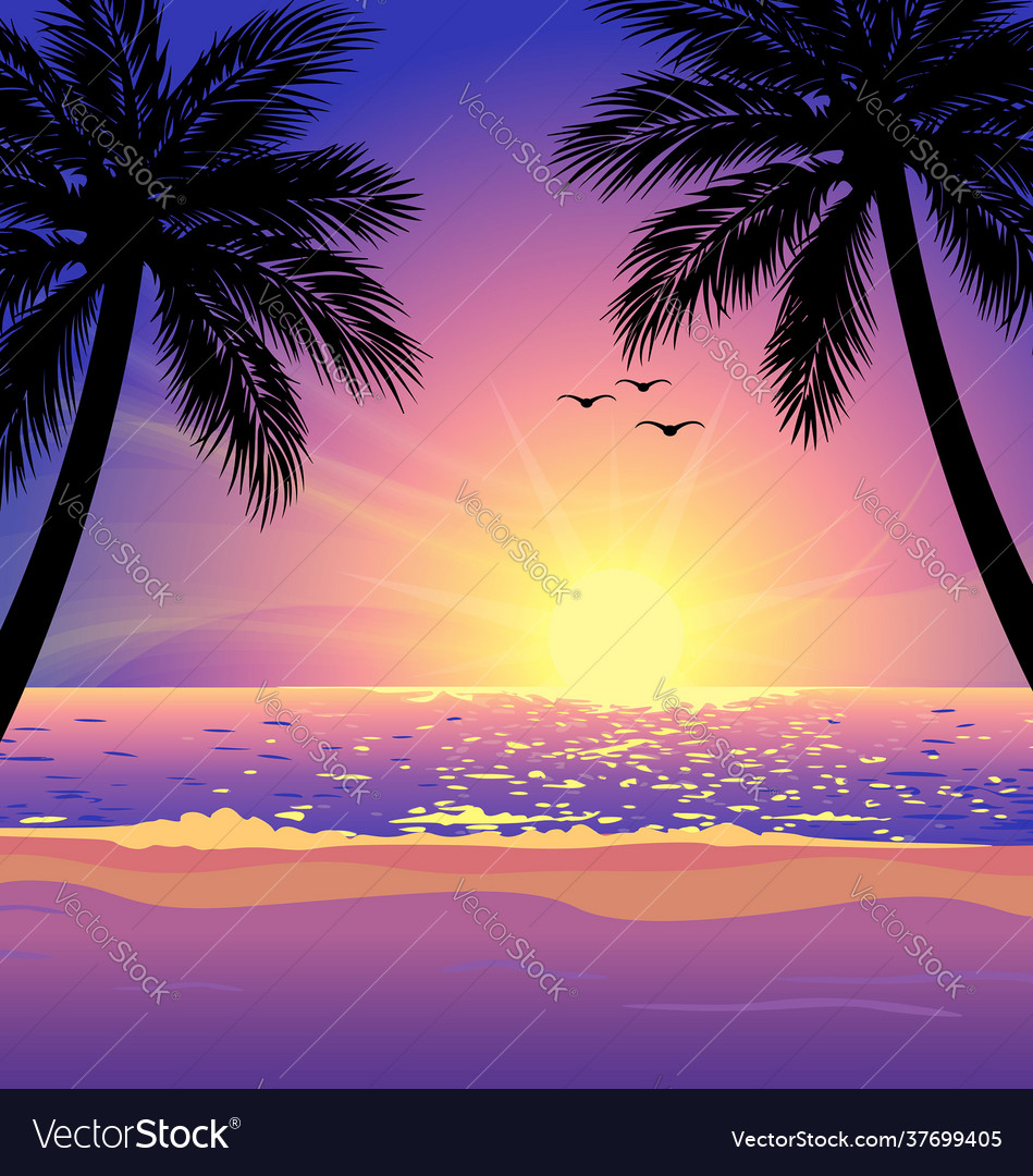 Warm tropical beach sunset with palm trees
