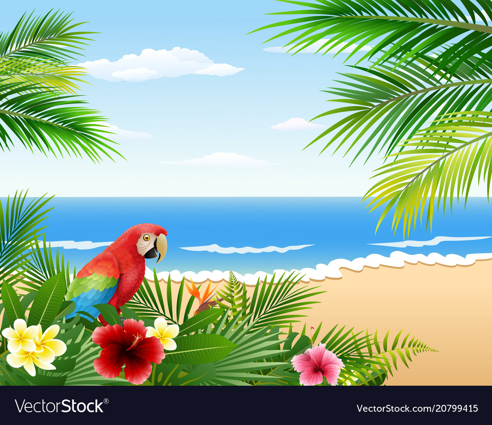 Cartoon parrots with beaches and tropical plants