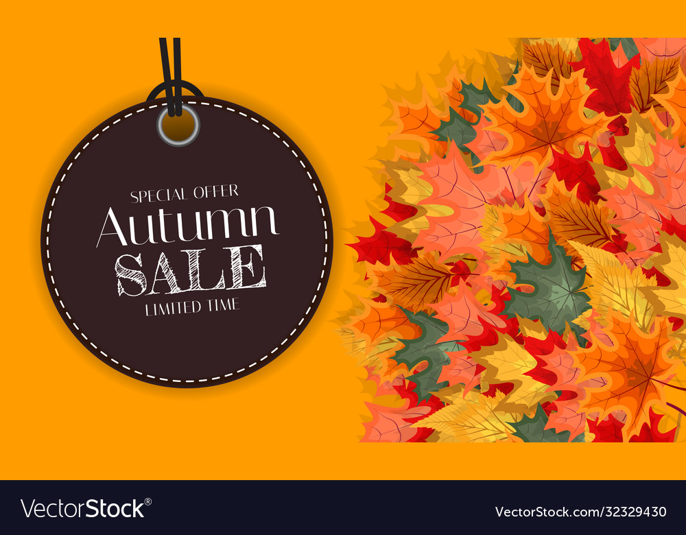 Autumn sale background template with leaves