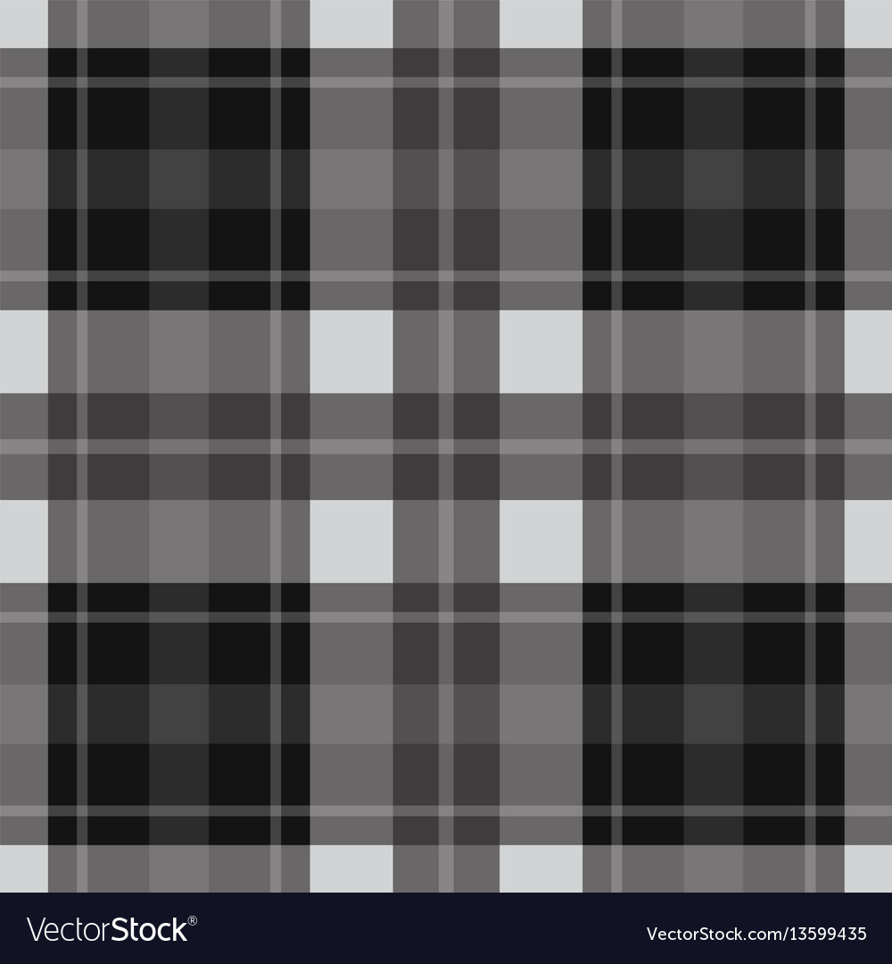 Seamless gray black tartan - white stripes vector image