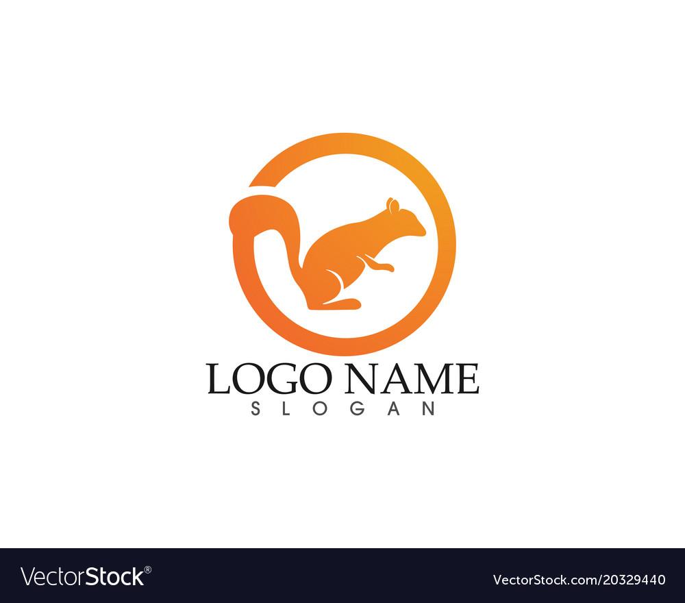 Squirrel logo and symbols