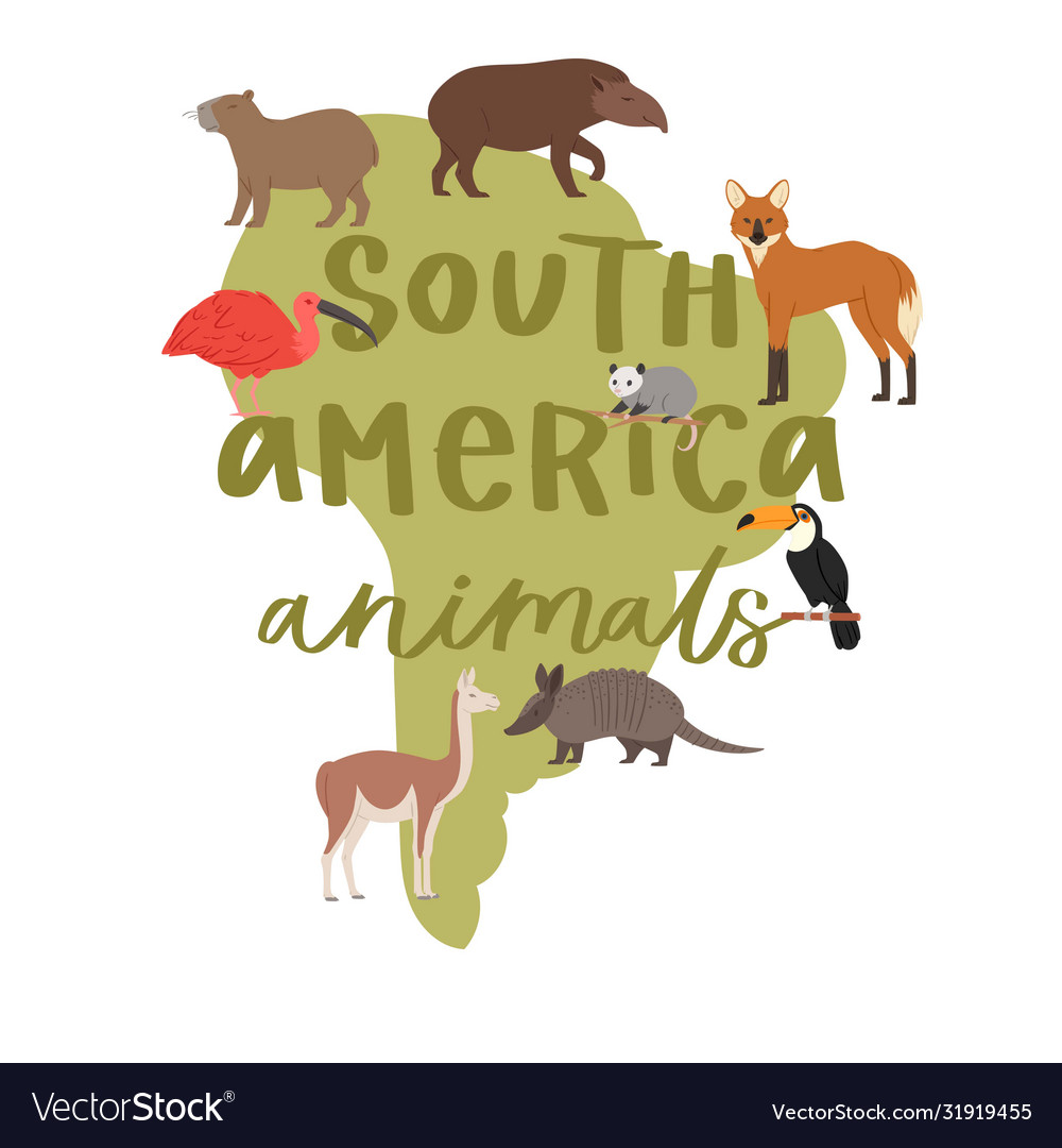 Lettering animals south america on map background