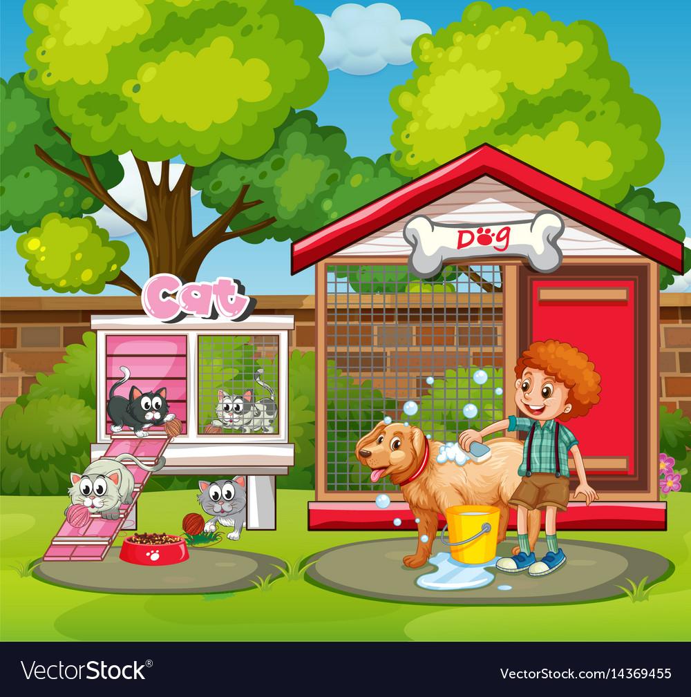Pet houses in the garden