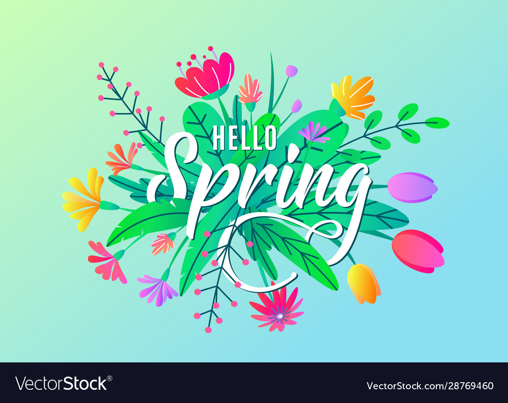 Hello spring greeting word text background