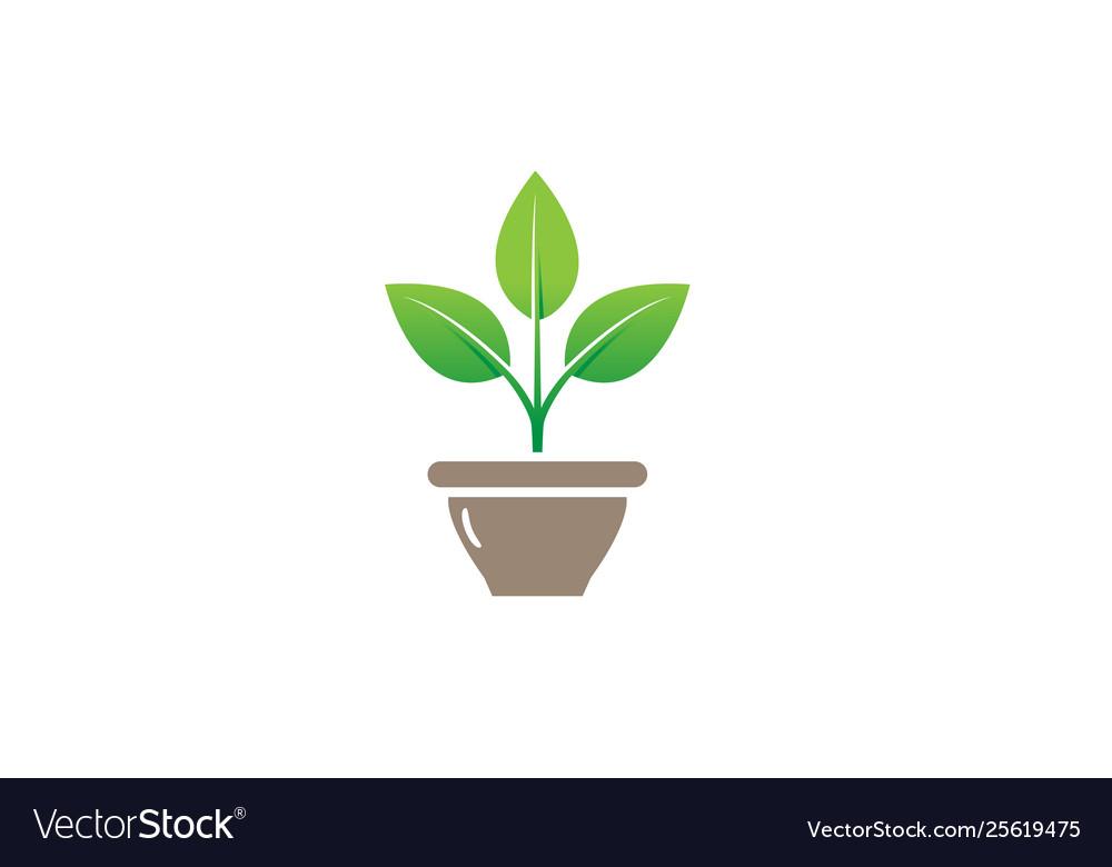 Creative flower plant bowl vase logo design symbol