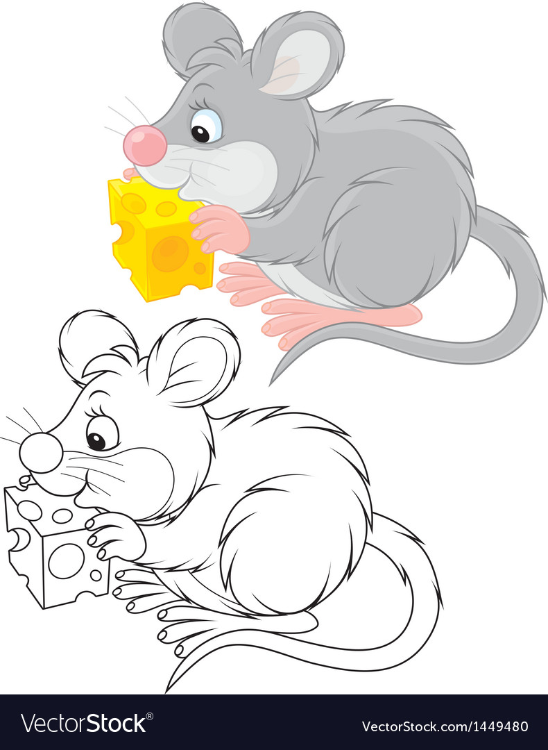 Mouse vector image