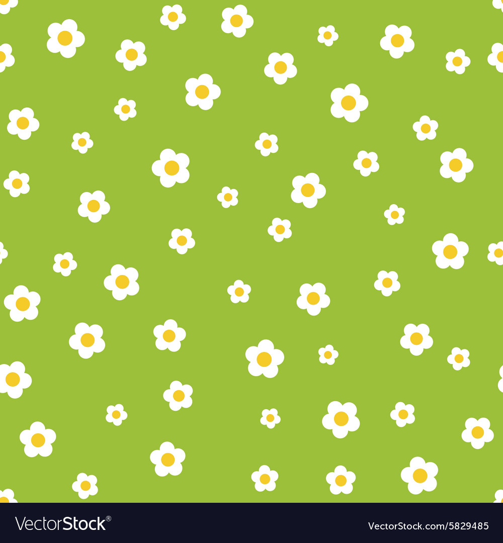 Camomile flower seamless pattern