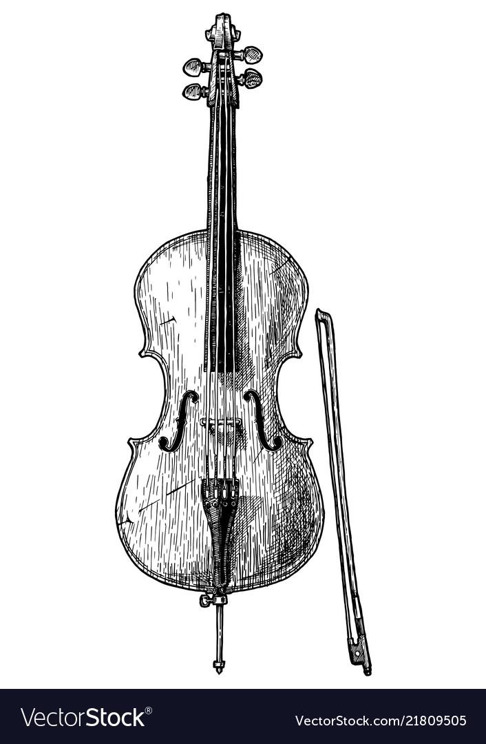 Vintage of cello