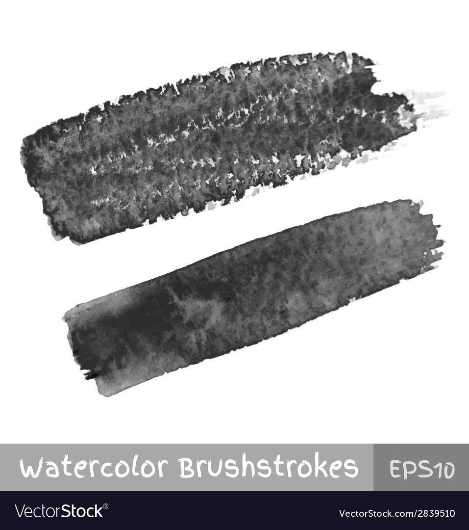 Gray Watercolor Brush Strokes vector image