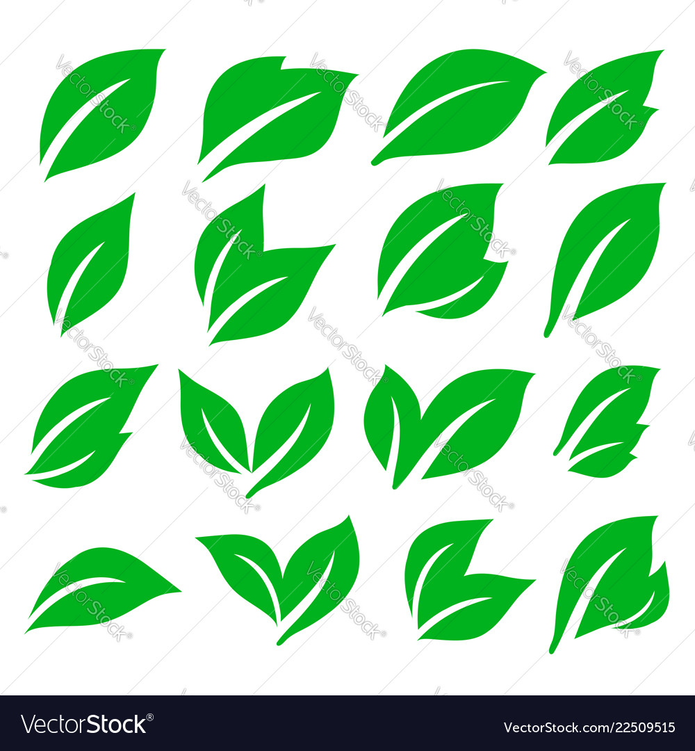 Green spring leaf icons set stock