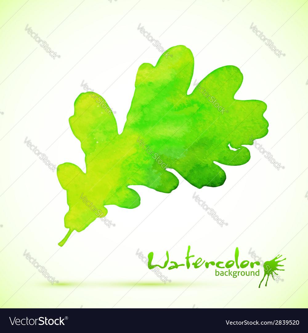 Green watercolor painted oak leaf