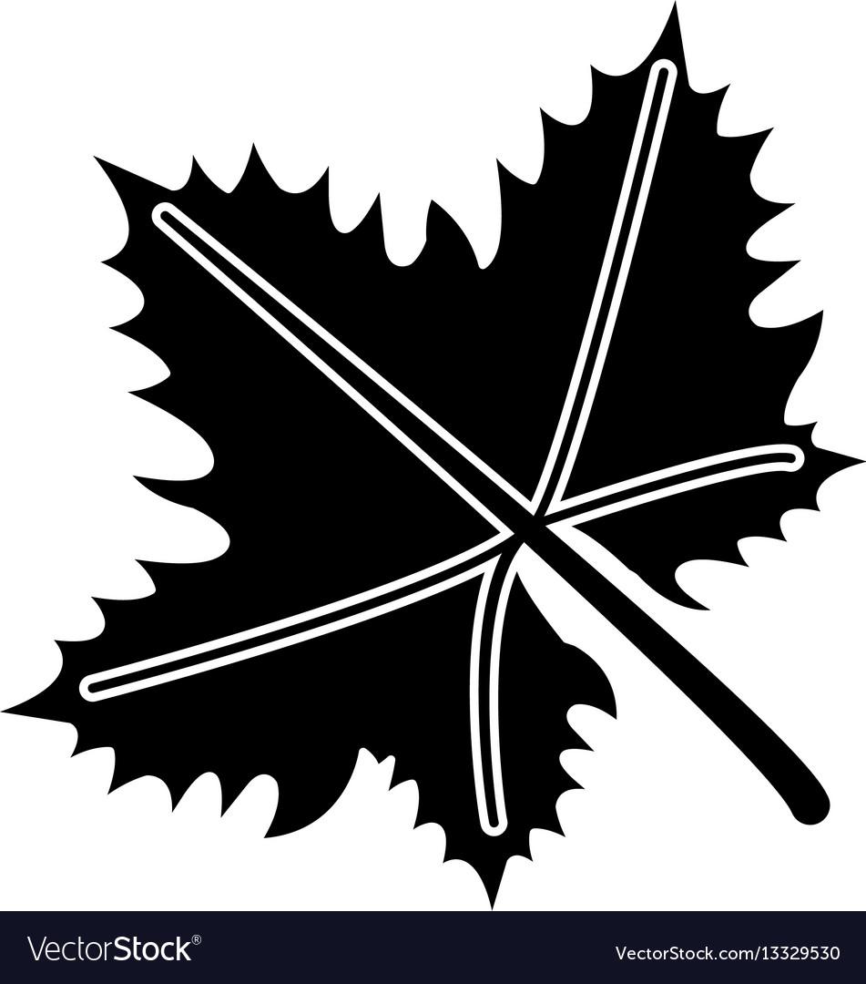 Leave grape wine symbol pictogram vector image
